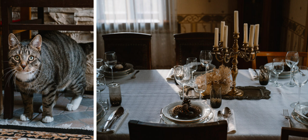 kot i stół na przyjęcie weselne w domu