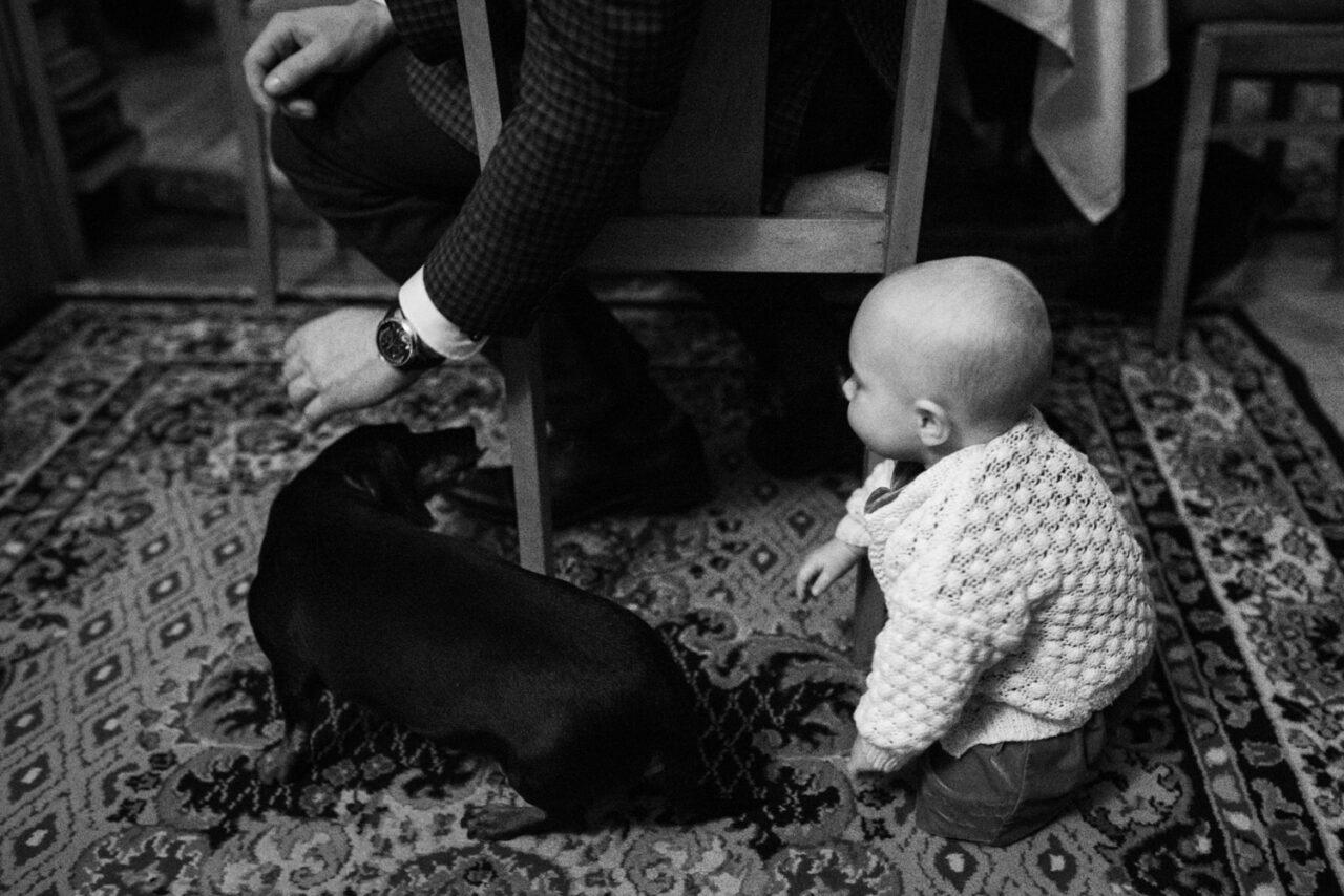 dziecko bawiące się z psem