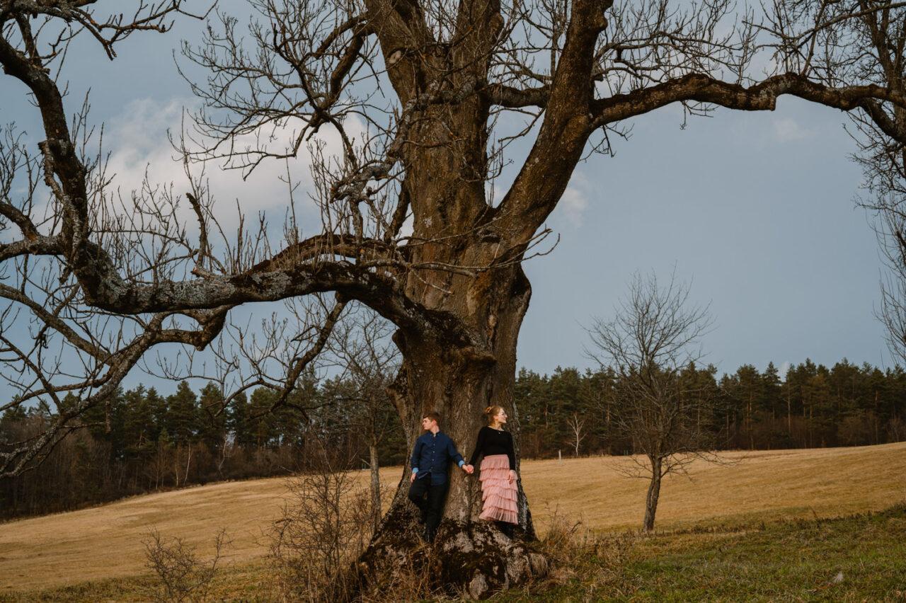 para narzeczonych trzyma sięza ręce na tle rozłożystego drzewa