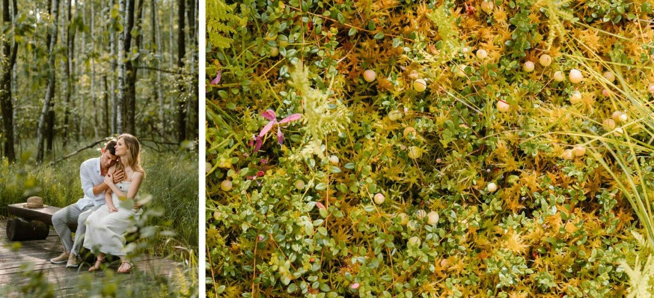 sesja w lesie - para zakochanych i żurawina
