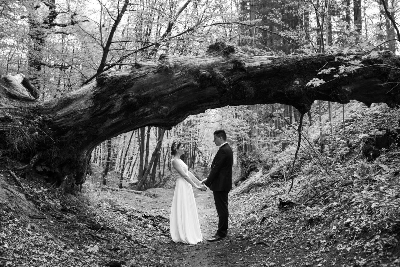 zdjęcia ślubne w Bieszczadach - para wśród lasów