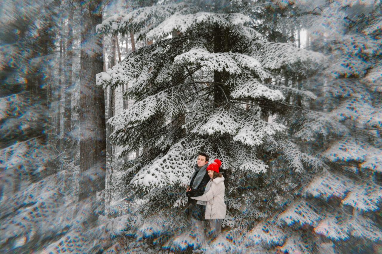 zimowa sesja dla pary na tle świerków