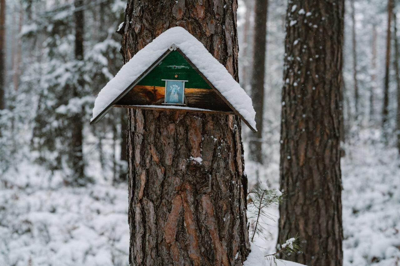 leśna kapliczka przybita do pnia drzew