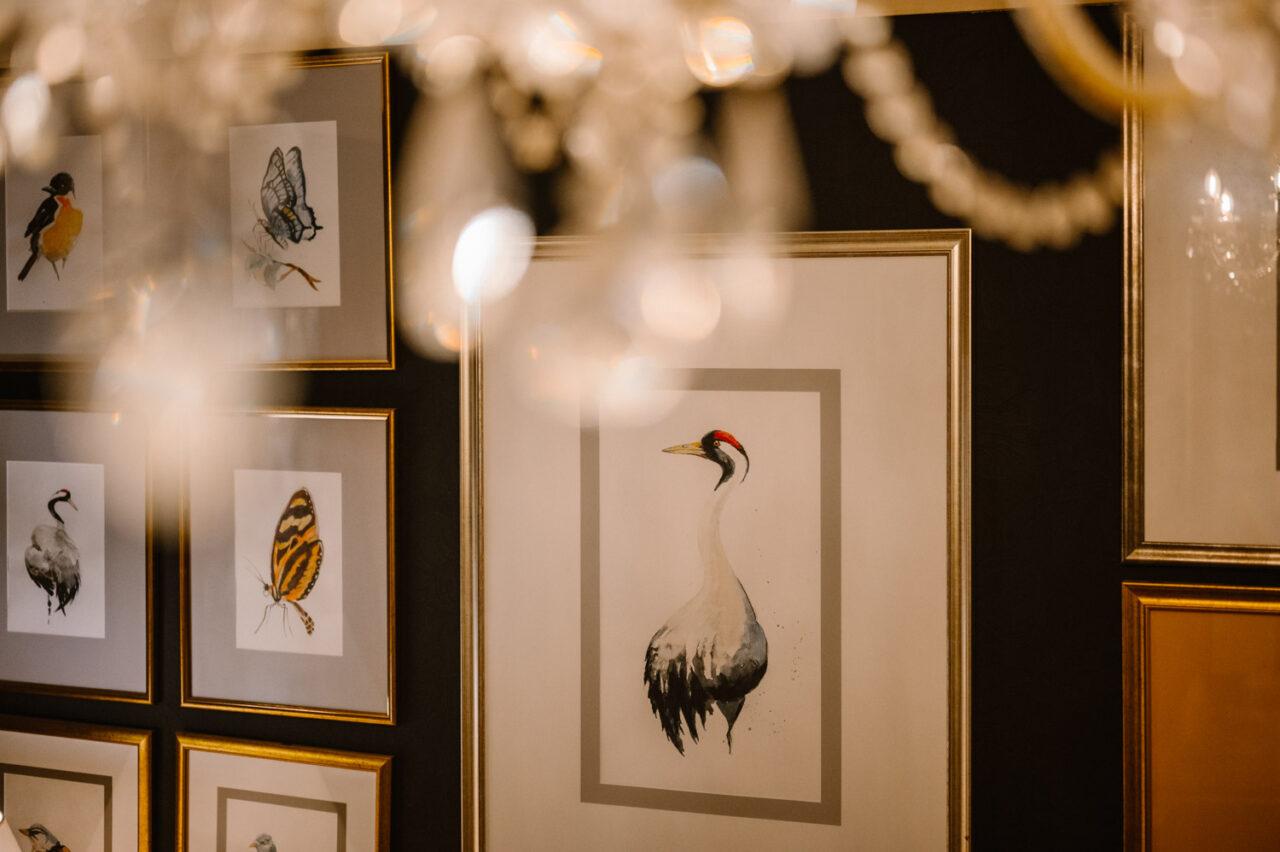 galeria akwareli z ptakami